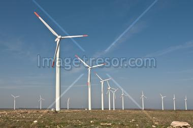 Wind power generators in the field